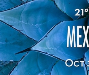 cover event 2021 Mexico Resort - Hyatt Ziva Riviera Cancun